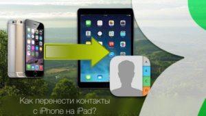 Перенос контактов с одного iPhone на другой: несколько способов