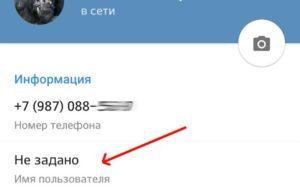 Принцип изменения имени пользователя в приложении «Telegram»