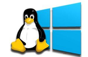 Какая операционная система лучше – Windows или Linux?