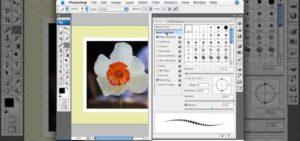 Правила применения штампа в Photoshop