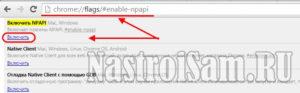 Включение NPAPI в Google Chrome