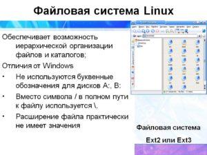 Работа с файлами и директориями в Linux