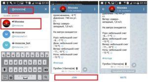 Поиск группы в «Telegram»