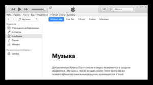 Инструкция по добавлению и удалению файлов в медиатеке iTunes