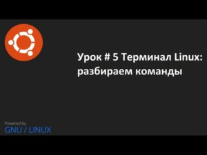 Команды терминала Ubuntu