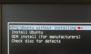 Запуск системы Ubuntu с флешки