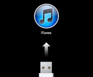iTunes не видит Айфон – причины и устранение неполадки