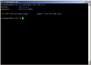 Установка и настройка DNS в Ubuntu