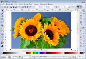 Обзор лучших программ для редактирования и создания логотипов