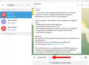 Как установить и пользоваться AVinfoBot в мессенджере «Telegram»
